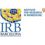 IRBBCN1